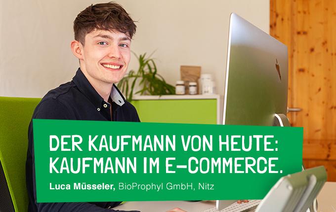 Der Kaufmann von heute: Kaufmann im E-Commerce